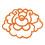 bloomdesignstudio