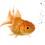 teresalikesfish