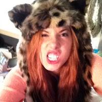 kittycat24
