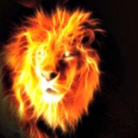 Avatar of Lions Share Deals