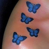 Avatar of butterflys01